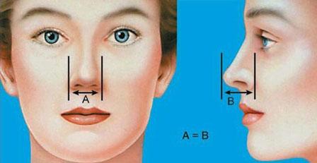 بهترین جراح بینی گوشتی در مشهد