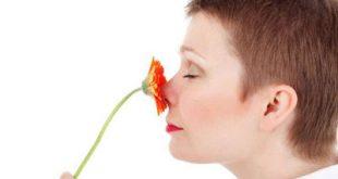 حس بویایی بعد از عمل بینی